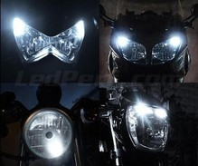 Set stadslichten met leds (wit Xenon) voor Harley-Davidson Forty-eight XL 1200 X (2010 - 2015)
