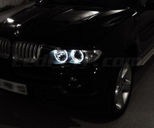 Set angel eyes met leds BMW X5 (E53) - Standaard
