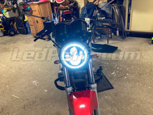 Led SUZUKI GS 500 2000 GS500e Tuning